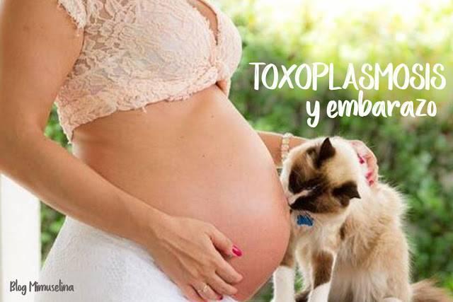 toxoplasmosis-embarazada-alimentacion-salud-mimuselina