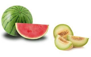 Alimentación complementaria bebe babyledweaning frutas melon y sandia