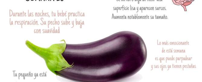 Semana 28 del embarazo bebé tamaño comparado con frutas
