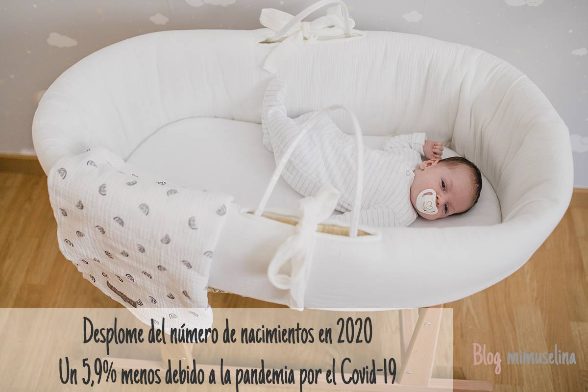 CAida de los nacimientos blog mimuselina INE pandemia